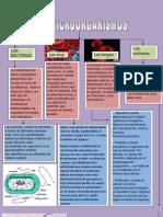 Doc1.Docx Los Microorganismos