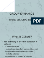 Group Dynamics (Cross Cultural Issues)