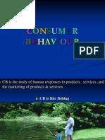 31524649 Consumer Behaviour