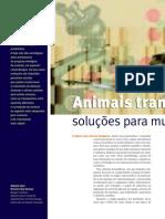Animais transgênicos soluções para muitos enigmas