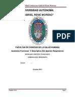 Anatomia Descriptiva Y Funcional Del Aparato Respiratorio