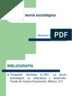 La teoría sociológica