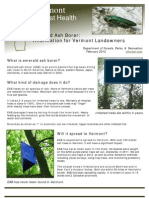 A quick guide to the emerald ash borer threat