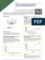 EC-OWLS for Esherichia-Coli detection