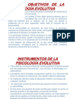 Objetivos-Instrumentos Psico Evolutiva