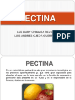 Pectin A