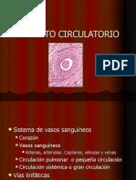 aparatocirculatoriohistologa-090715234257-phpapp02