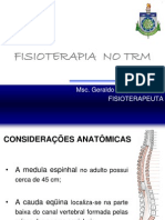 Fisioterapia No Trm