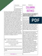 Boletín n1