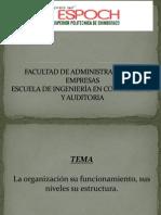 ORGANIZACION MATERIA COMPLETA