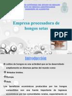 SETAS PRESENTACION (1)