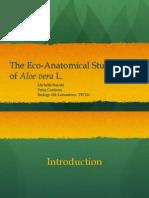 The Eco-Ananatomical Study