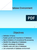 1. Database Environment
