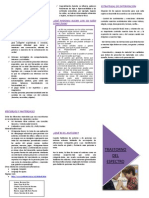 Triptico Final1 PDF Diario