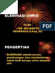 Eleminasi Urine