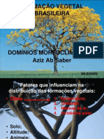 dominios_morfoclimaticos