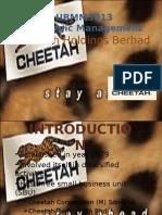 Cheetah Presentation