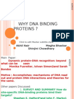 DNAP Protein Review