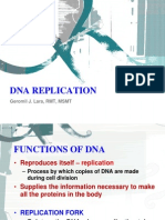05 Dna Replication