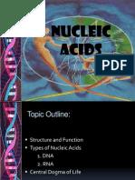 nucleicacids2eee2-120426222747-phpapp01