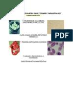 Veterinary Parasitology By Valsoriml
