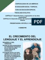 Desarrollo Fsico y Cognoscitivo en Los Aos Preescolares 1233326666356816 2