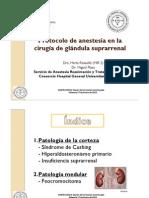 PLAZA Anestesia Cirugia Glandula Supra Renal Sesion SARTD CHGUV 17-1-12