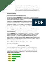 Criterios Del Informe de Lab Oratorio