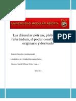 Informe Ex Aula ado a Las Clausulas Petreas