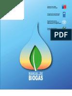 Manual Biogas