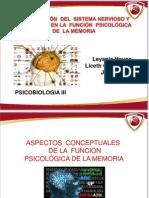 Diapositivas Psicobiologia III La Memoria