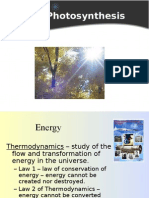 Photosynthesis Power Point Notes
