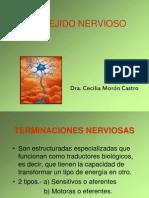 TEJIDO NERVIOSO II-2008