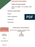 SEMINÁRIO DE EMBRIOLOGIA (2)
