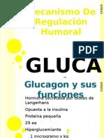 _glucagón.pptx_