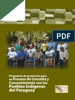 Propuesta de protocolo para un Proceso de Consulta y Consentimiento con los Pueblos Indígenas del Paraguay - FAPI