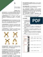 LA CITOGENÉTICA 2 D - practica