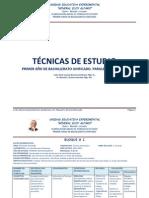 Tecnica de Estudio Plan Anual UEEA 2012
