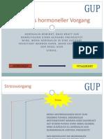 Stress als hormoneller Vorgang