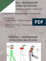 Citologia - Organização Estrutural das Células