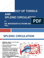 Histology of Tonsil and Splenic Circulation by Dr. Roomi