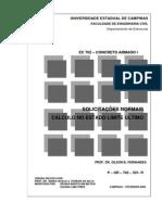 APOSTILA CONCRETO ARMADO I - SOLICITAÇÕES NORMAISCÁLCULO NO ESTADO LIMITE ÚLTIMO