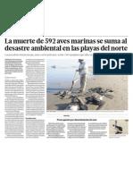 Desastre ecológico al morir 592 aver marinas en playas del norte del Perú