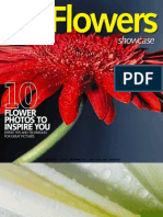 Digital Camera Magazine - Flowers Showcase Malestrom