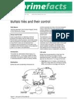 Buffalo Flies and Their Control