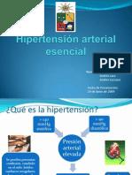 Hipertensión arterial esencial presentacion