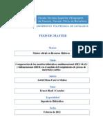 Informe Final Tesina Master_astrid_cuervo