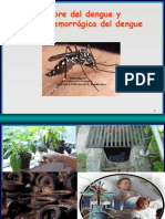 Dengue Hemorragico Junio 2005