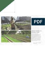 Precedents Farming and Bio Remediation