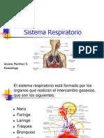 Anatom_a Del Sistema Respiratorio